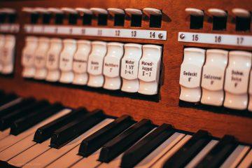 organy-06.03.17-81zr
