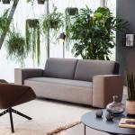 MONTIS_ZoomIn_sofa