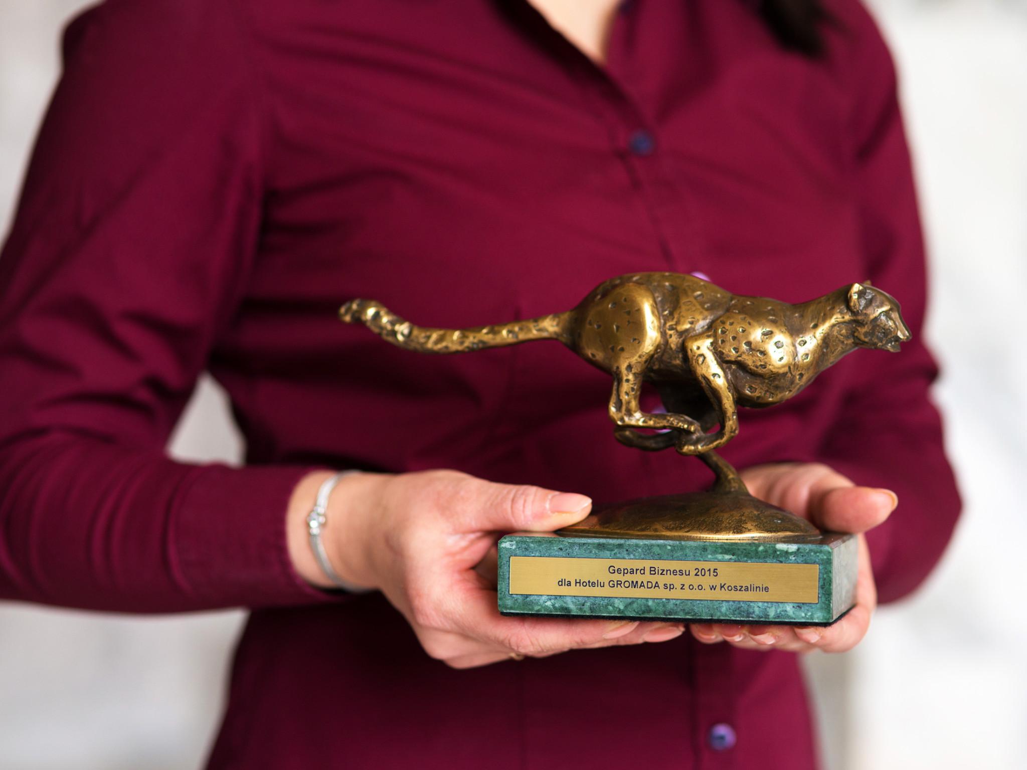 Nagroda Geparda, jedno z niedawno zdobytych wyróżnień
