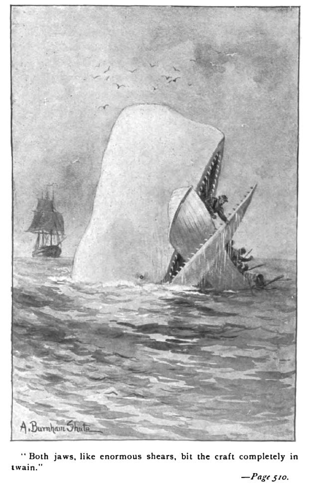 Ilustracja do Moby Dicka Augustus Burnham Shute - C. H. Simonds Co