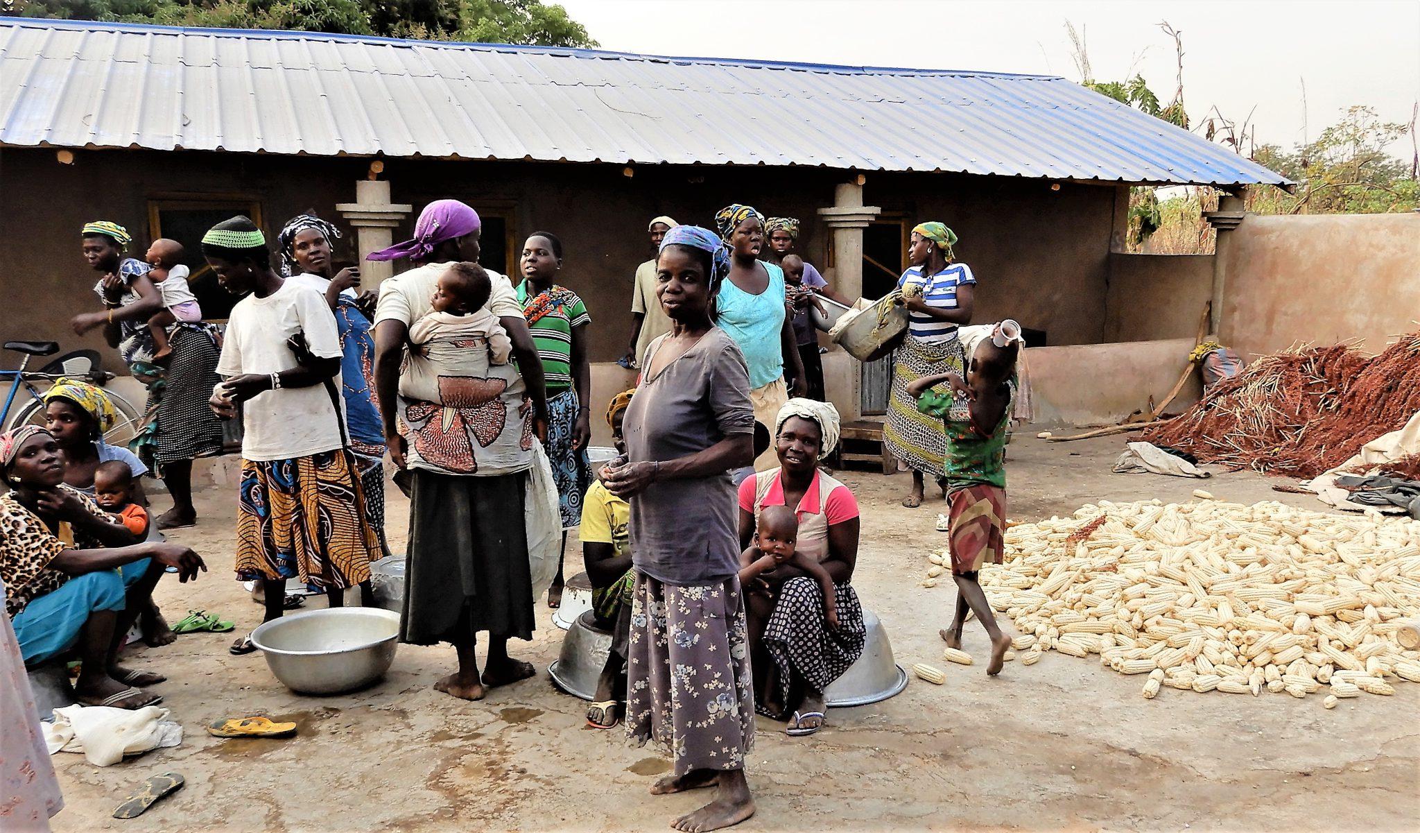 Pora żniw. W Togo nadal niemal 70 procent społeczeństwa utrzymuje się z rolnictwa. Dominują proste uprawy, a podstawą codziennego menu jest kukurydza, proso, fasola. Koszt dziennego wyżywienia jednej osoby to mniej niż równowartość złotówki.